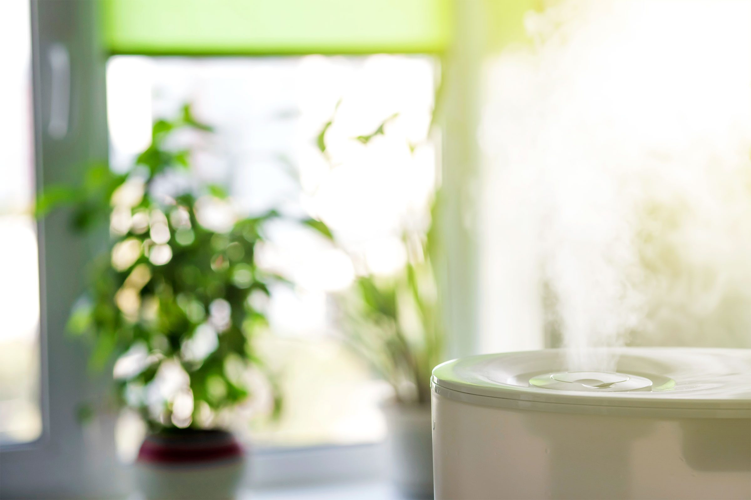 https://www.amazon.com/Cool-Mist-Humidifier-Bedroom-Ultrasonic/dp/B077Z2QCS5/